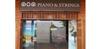 website-101pianoandstrings-01